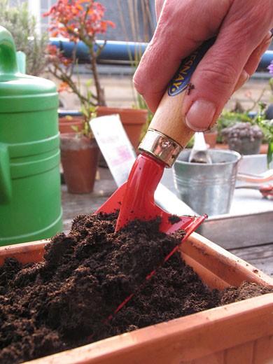 IN*Gros plan sur main d'une femme, sur balcon, rempotant plantes, petite pelle rouge, terre, jardinière : Stock Photo