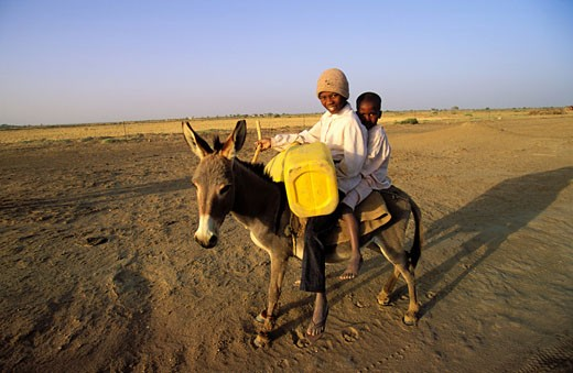 Stock Photo: 1606-40524 Senegal, Saint Louis region, children on a donkey