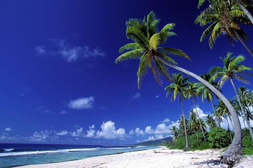 Stock Photo: 1606-40551 French Polynesia, Huahine island, sandy beach
