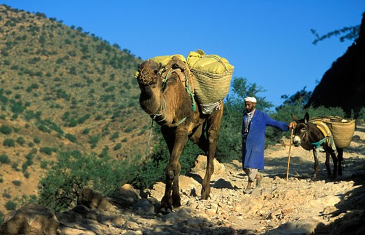 Stock Photo: 1606-40764 Morocco, Anti-Atlas