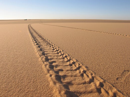 Libya, tyre tracks in the sand : Stock Photo