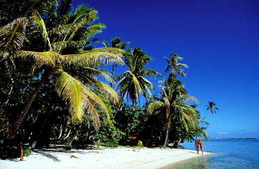 Stock Photo: 1606-43760 FRENCH POLYNESIA, TAHAA ISLAND, THE VAHINE ISLAND, SMALL LUXURY HOTEL ON THE REEF BARRIER IN THE HEART OF THE PACIFIC OCEAN