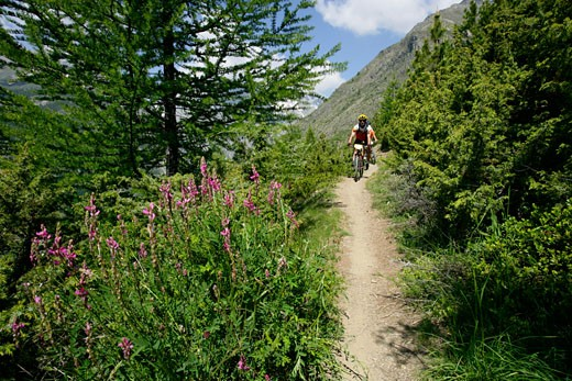 France, Hautes Alpes in summer, 2 persons on mountain bikes : Stock Photo