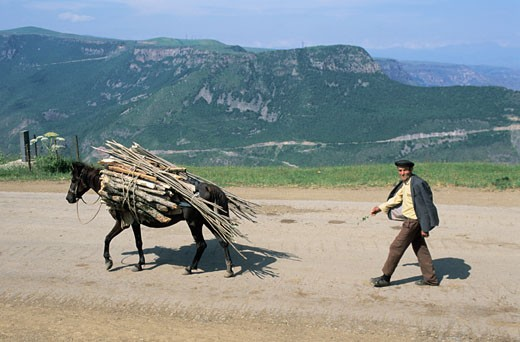 Stock Photo: 1606-46725 Armenia, Tatev, man and mule carrying wood