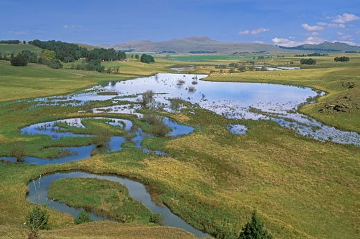 South Africa, Drakensberg, pond : Stock Photo