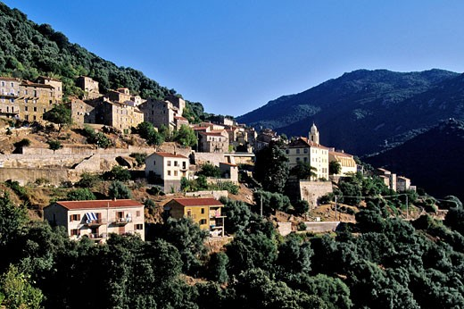 France, South Corsica (21) Olmeto village : Stock Photo