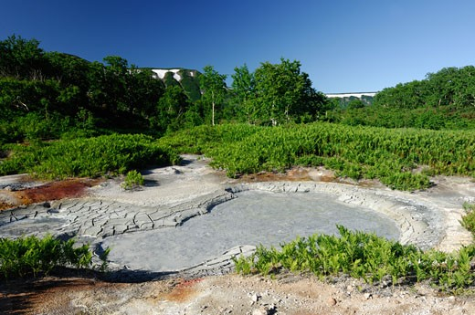 Russia, Siberia, Kamtchatka, Caldeira d'Uzon, acid mud pond and vegetation : Stock Photo