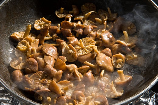 Close up of cooked mushrooms : Stock Photo