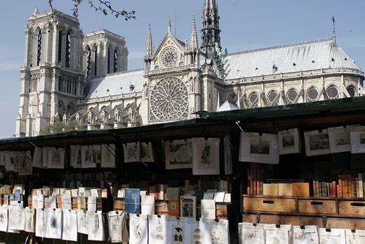 Stock Photo: 1606-53836 France, Paris, antiquarian booksellers, Notre-Dame cathedral in background