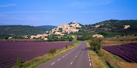 Stock Photo: 1606-54156 France, Provence-Alpes-Côte d'Azur, Alpes-de-Haute-Provence, Simiane-la-Rotonde, road amongst lavender fields in the foreground