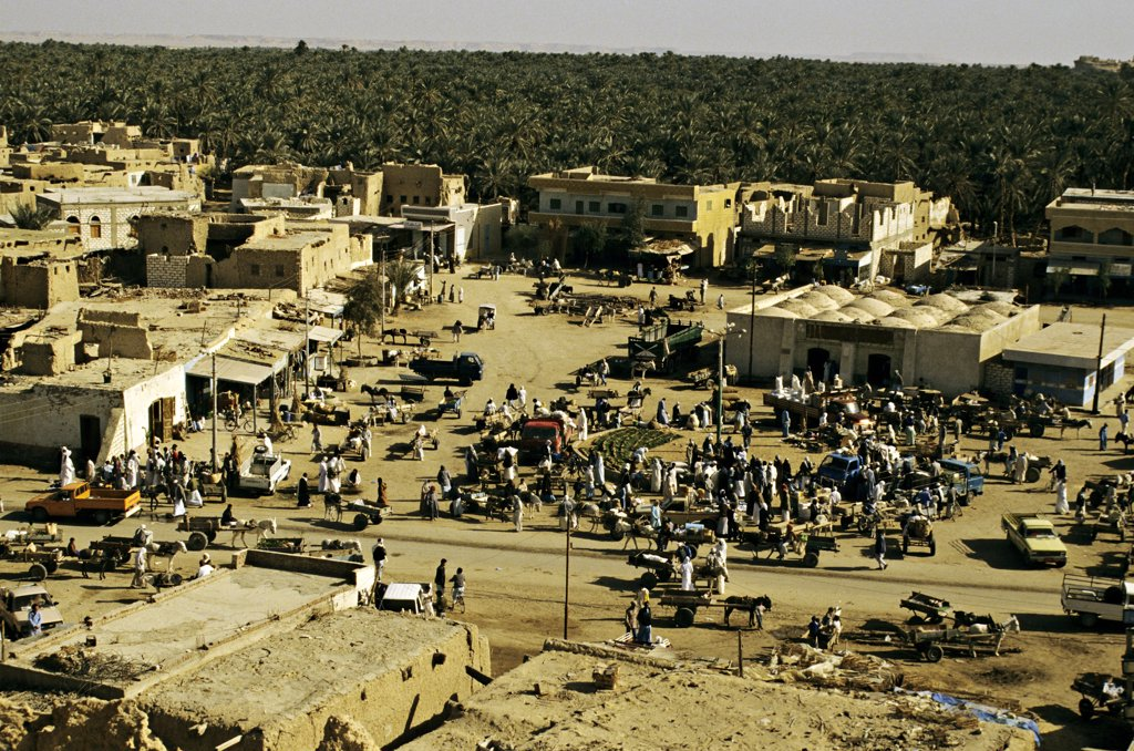 Stock Photo: 1606-55789 Egypt, Siwa oasis, friday market