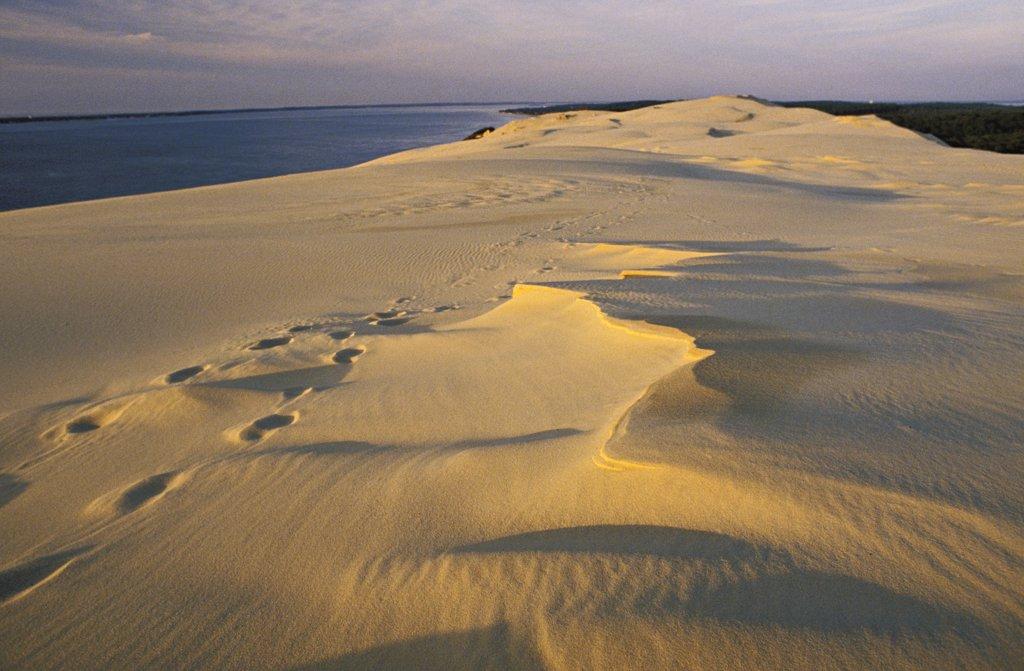 France, Aquitaine, Gironde, Dune du Pilat : Stock Photo