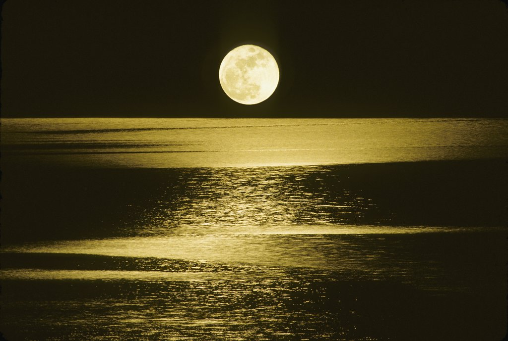 Moon over the sea, by night : Stock Photo