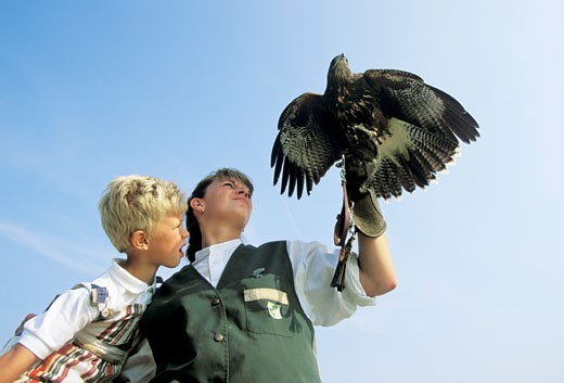 France, Picardie, Baie de Somme, child and woman holding bird of prey, low angle view : Stock Photo