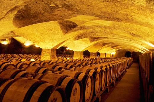 France, Burgundy, Cote d'Or, Meursault, cellar : Stock Photo