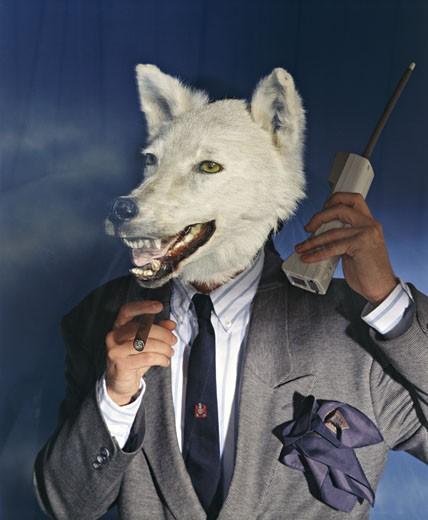 Stock Photo: 1606-59997 :Portrait, hme en costume, avec tête de loup blanc, tenant téléphone sans fil, fumant cigare, studio