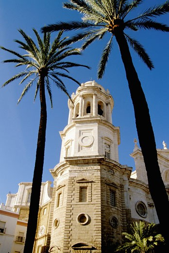 Spain, Andalusia, Cadiz, cathedral : Stock Photo
