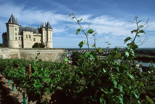Stock Photo: 1606-61701 France,Pays de la Loire, Maine-et-Loire, Saumur castle