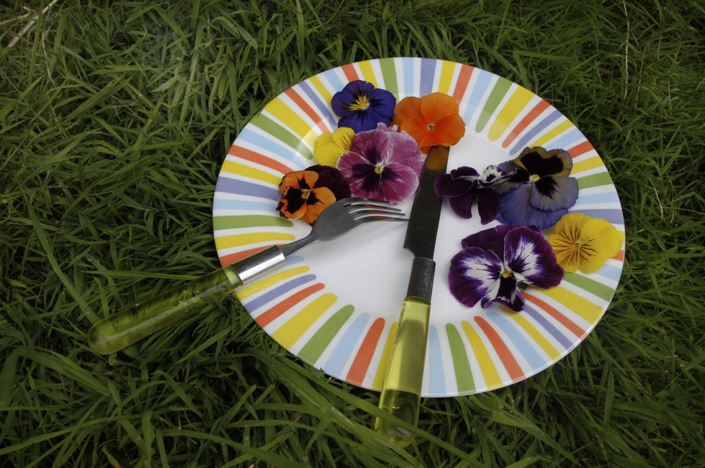 Stock Photo: 1606-63611 Pansies in a plate with cutlery