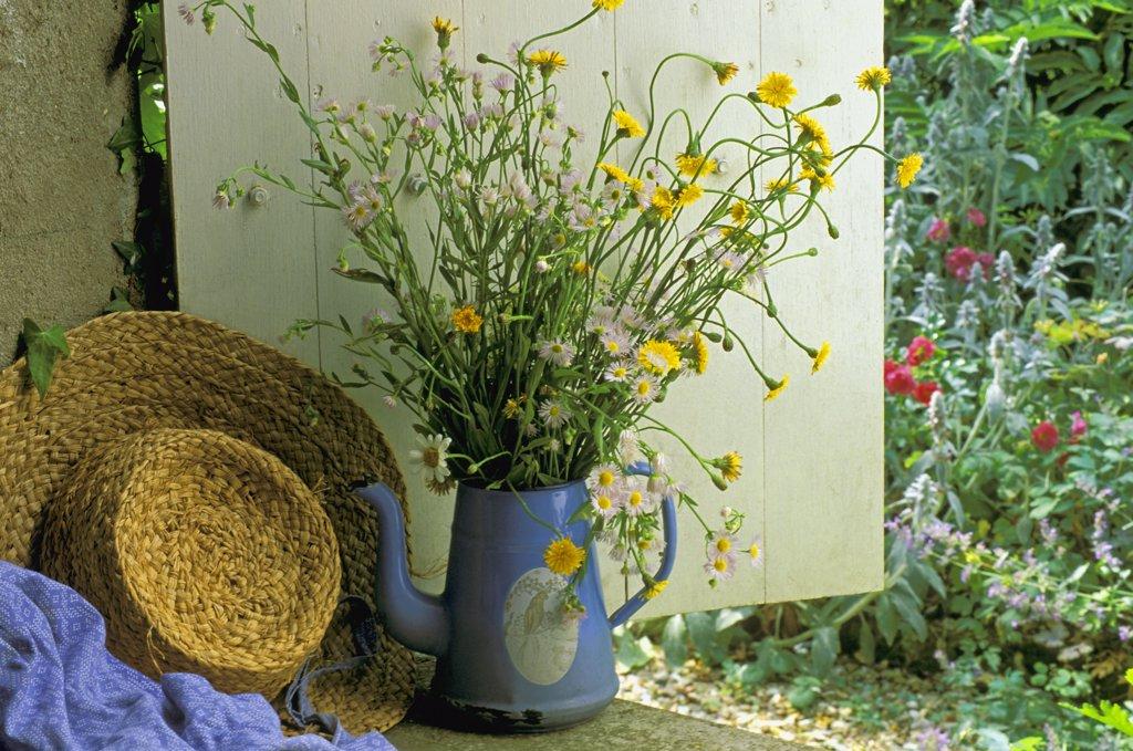 Wild flowers bouquet : Stock Photo