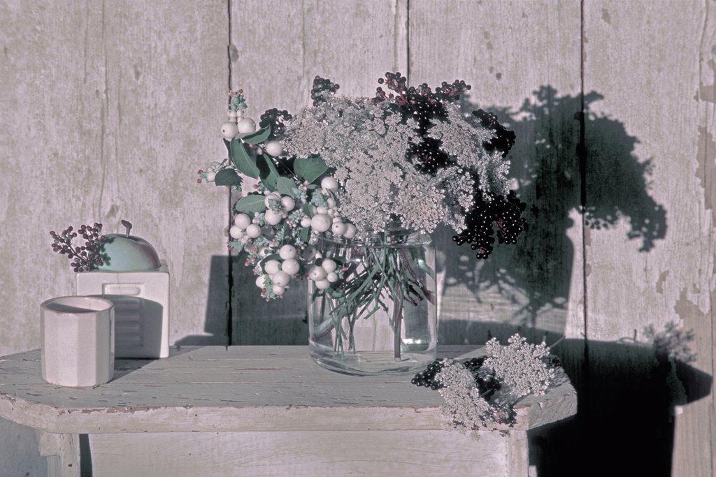 Stock Photo: 1606-65040 Elderberries bouquet