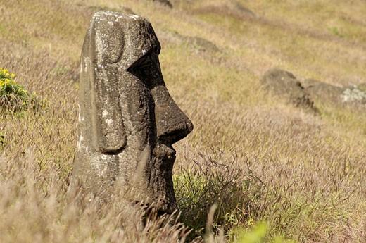 Stock Photo: 1606-68180 Easter island, Rano Raraku, moai statue
