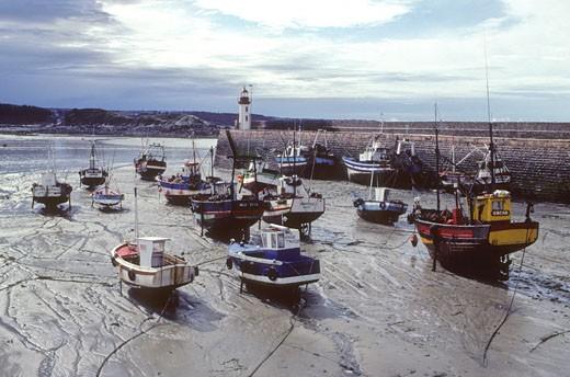 France, Bretagne, Cotes d'armor (22), Erquy harbour : Stock Photo