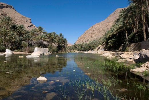 Sultanate of Oman, wadi Bani Khalid, river ad cliffs : Stock Photo