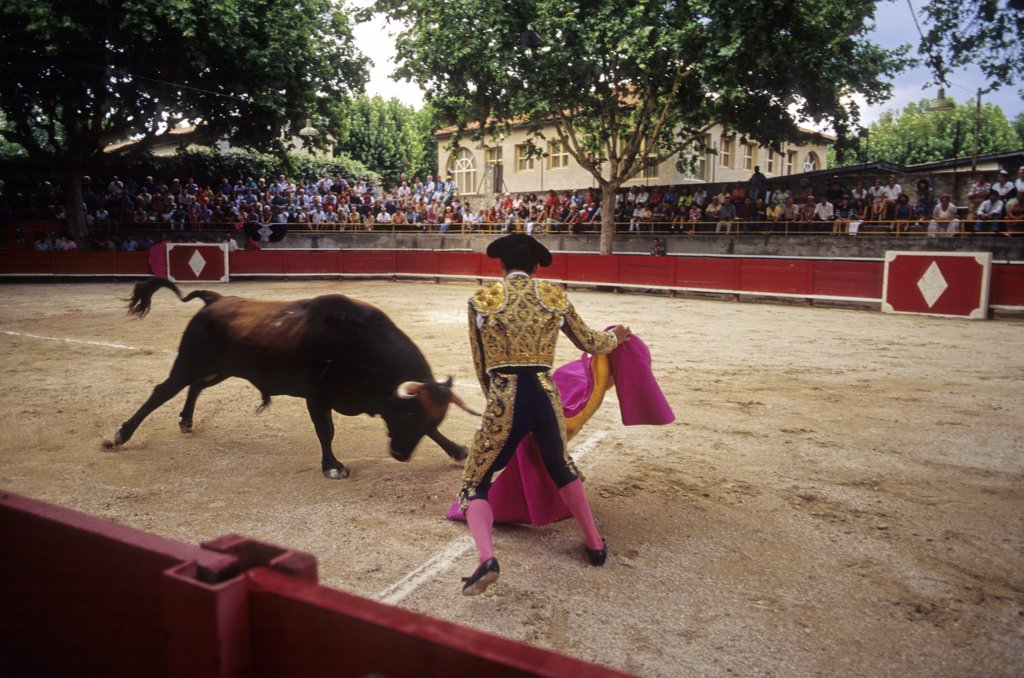 France, Alpes Provence cote d'Azur, Provence, Bouches du Rhône, Tarascon, bullfight : Stock Photo