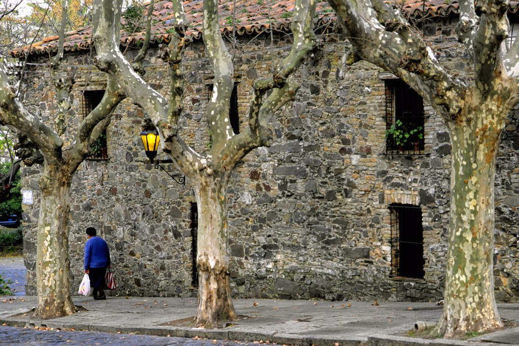 Uruguay, Colonia del Sacramento, street scene : Stock Photo