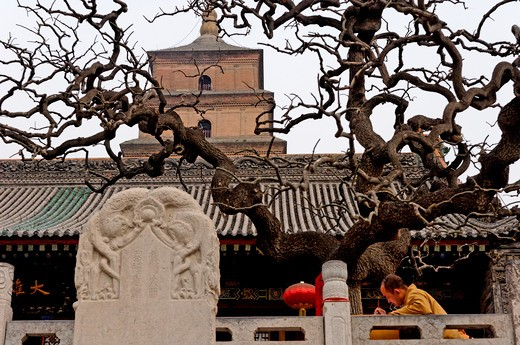 China, Shaanxi, Xian, Giant Wild Goose Pagoda : Stock Photo