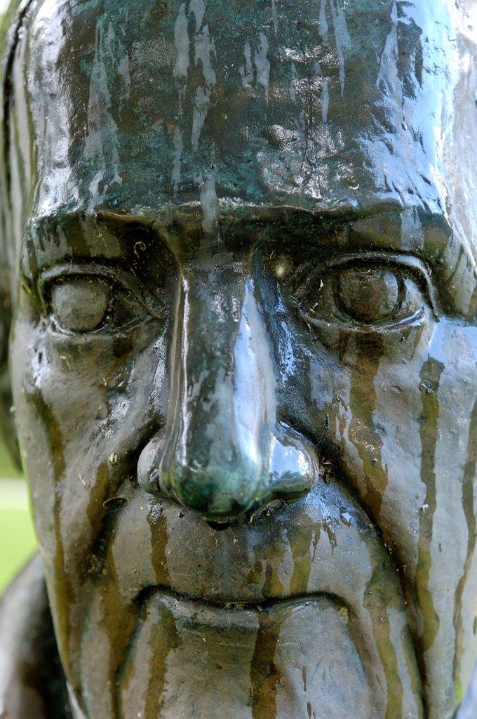 Azores, Sao Miguel island, Furnas, Terra Nostra garden, Thomas Hickling's bust : Stock Photo