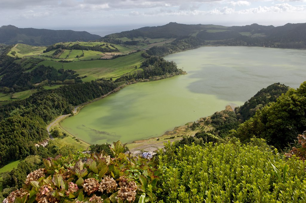 Azores, S. Miguel island, Furnas lake : Stock Photo