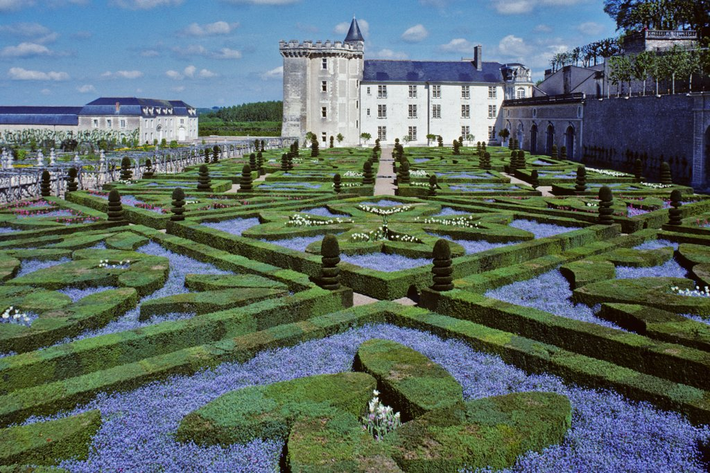 France, Centre, Indre et Loire, Villandry, garden : Stock Photo