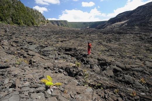 USA, Hawa, Volcanoes National Park, Kilauea Iki crater : Stock Photo