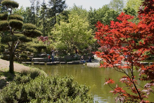 Stock Photo: 1606-96075 Japanese garden