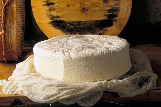 France, Savoy, close-up on drying Beaufort cheese : Stock Photo