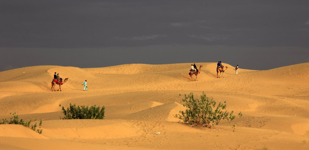 India, Rajasthan, Thar Desert, Sam Sand Dunes, people on camels : Stock Photo