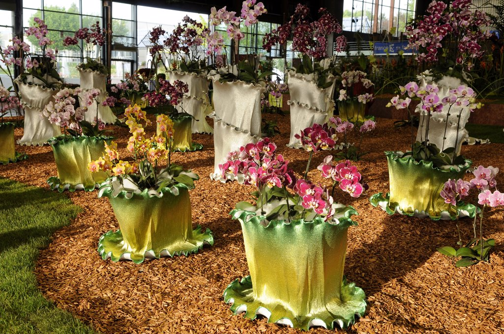France, Pays de la Loire, Loire-Atlantique, Nantes, Floralies Internationales (flower exhibition) : Stock Photo