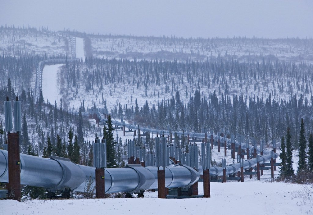 Stock Photo: 1609-11800 Trans Alaska pipeline, Alaska, USA