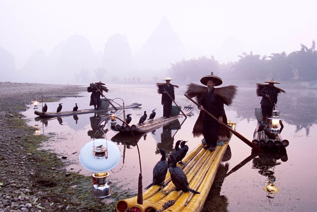 Stock Photo: 1609-12185 Li River / Cormorant Fisherman on Bamboo Rafts, Guilin / Yangshou, Guangxi Province, China