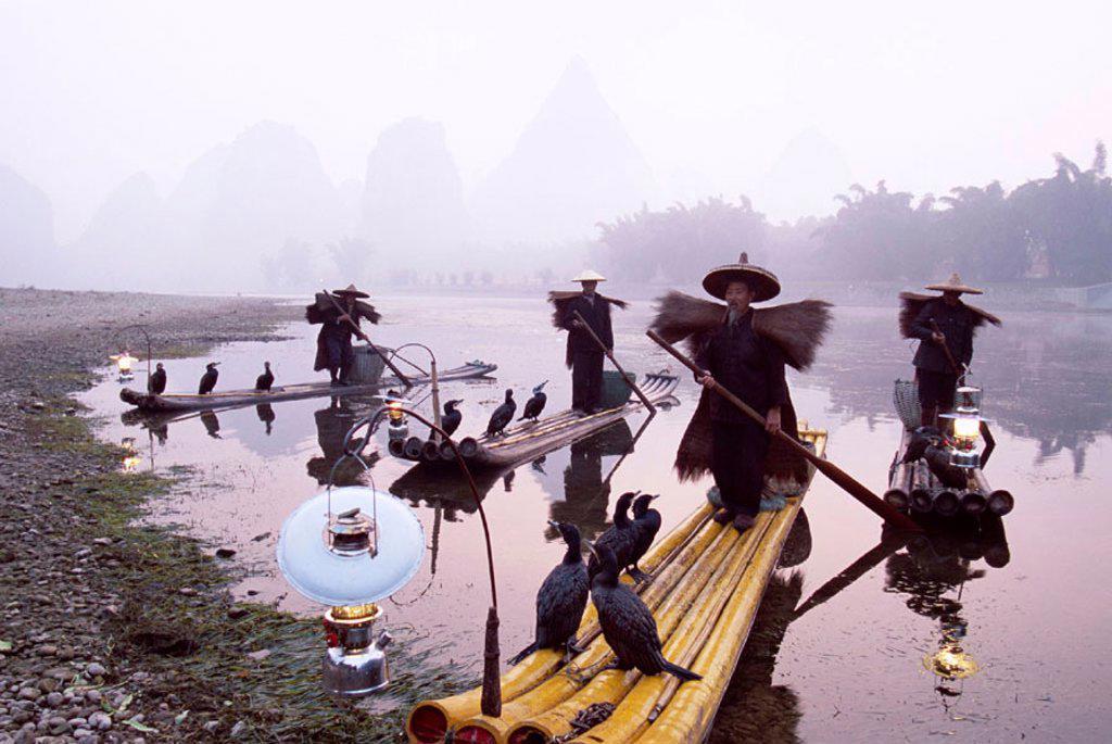 Li River / Cormorant Fisherman on Bamboo Rafts, Guilin / Yangshou, Guangxi Province, China : Stock Photo