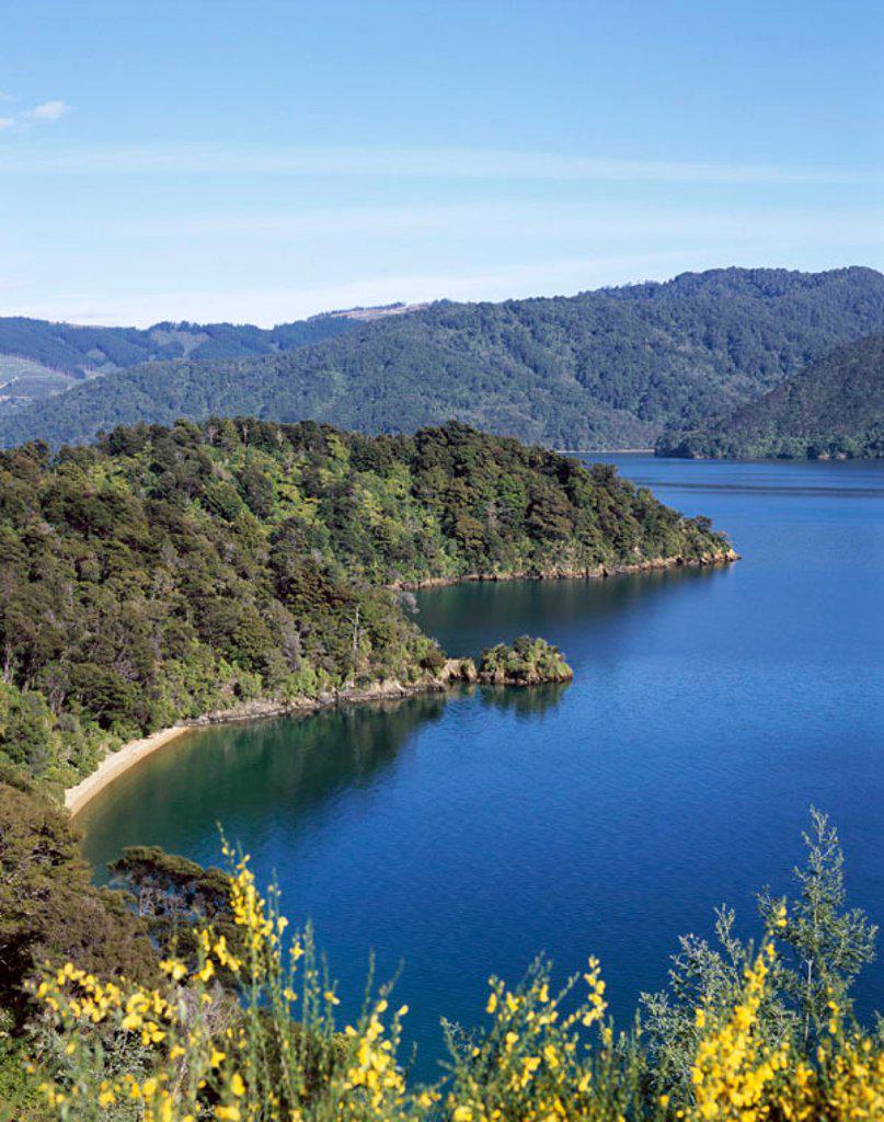 Stock Photo: 1609-13819 Marlborough Sounds / Queen Charlotte Sound, Marlborough, South Island, New Zealand