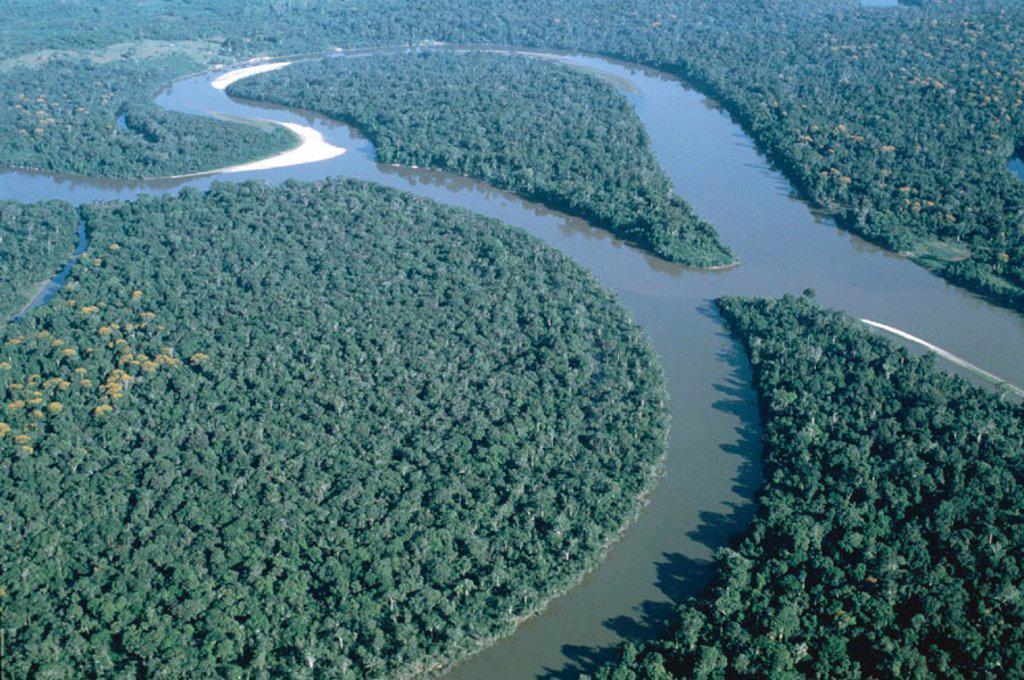Amazon River / Amazon Jungle / Aerial View, Brazil : Stock Photo