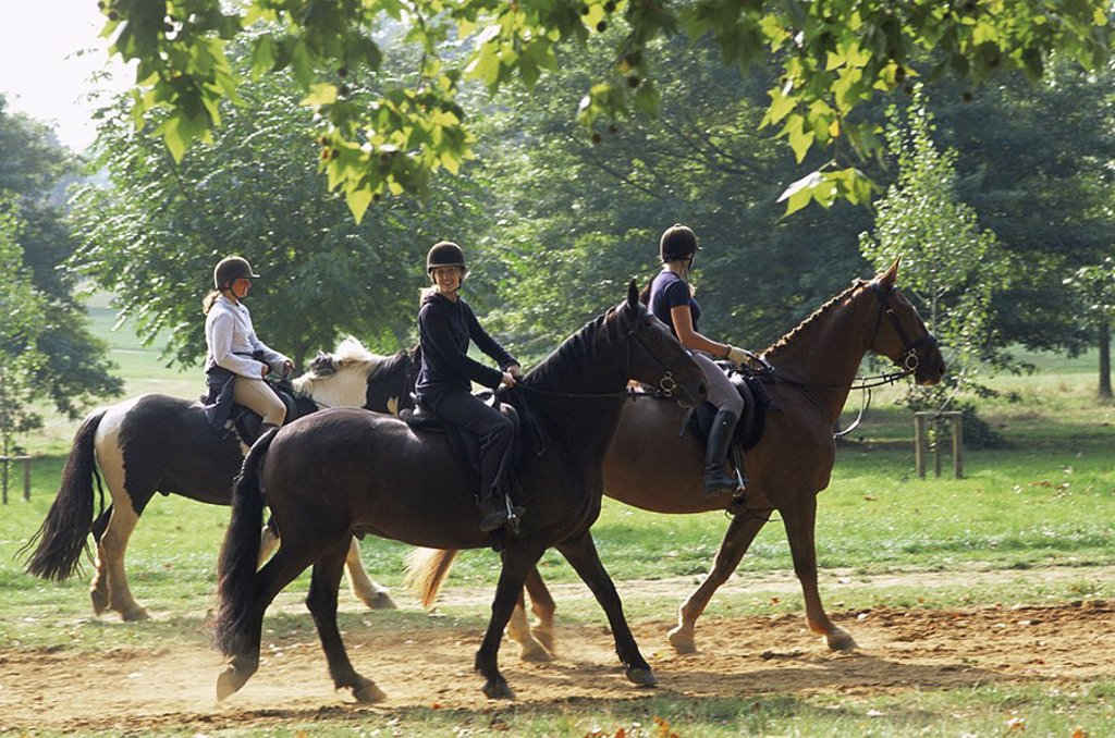 Stock Photo: 1609-22100 August 2006. England, London, Horse Riding in Hyde Park