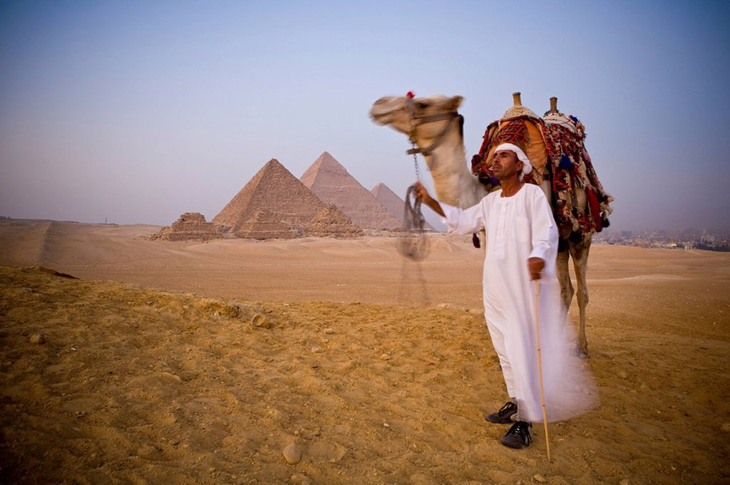 Stock Photo: 1609-24856 Camel & driver at the Pyramids, Giza, Cairo, Egypt