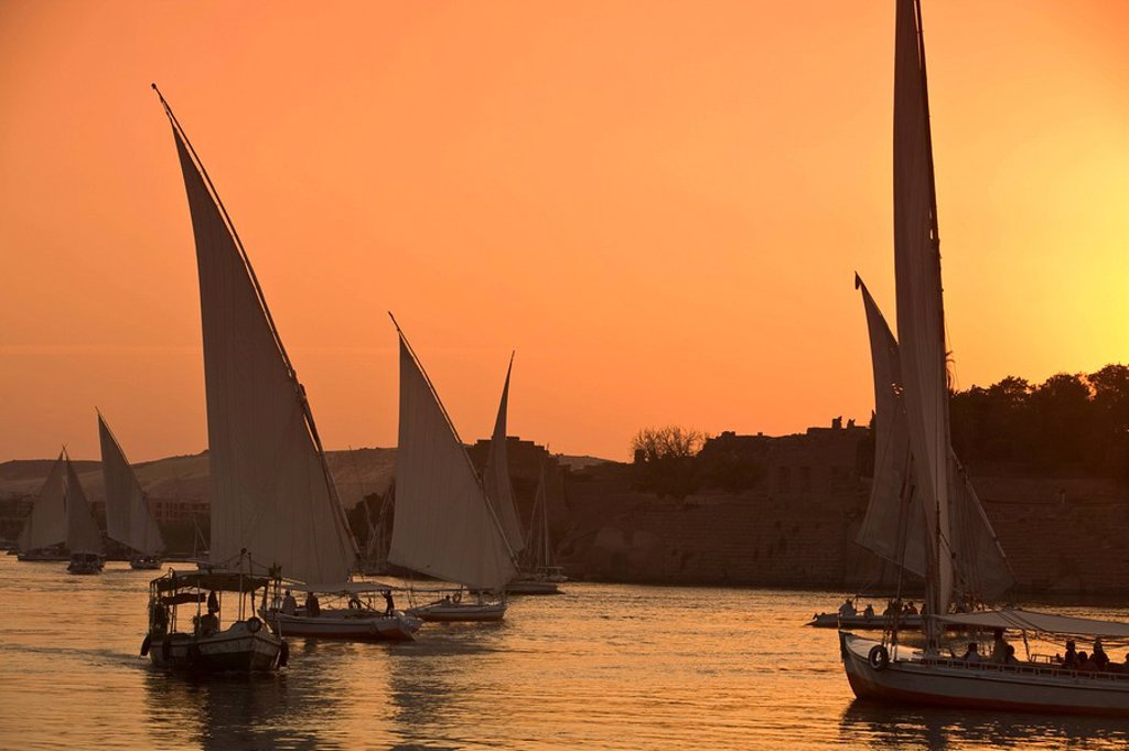 Stock Photo: 1609-24900 Feluccas on River Nile, Aswan, Egypt