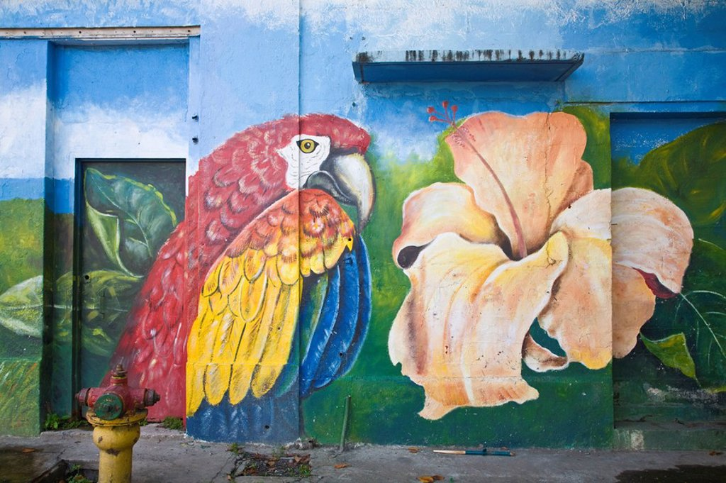 Stock Photo: 1609-25754 Panama, Panama City, Casco Viejo San Felipe, Colourful murial painted on building
