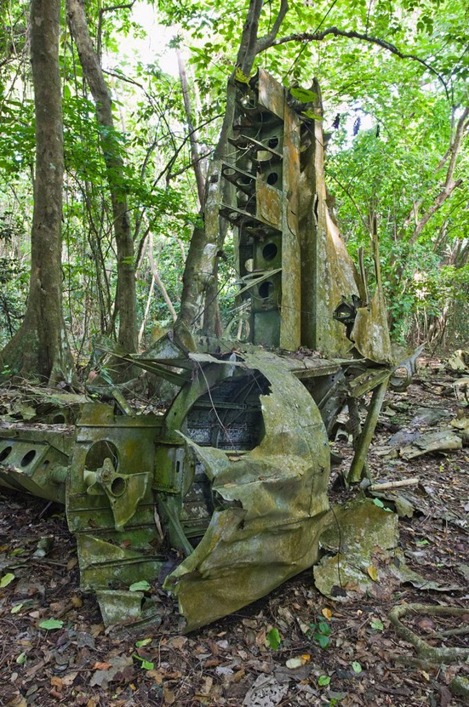 Vanuatu, Espiritu Santo Island Luganville, WW2 B_17 Bomber Wreck by Million Dollar Point : Stock Photo