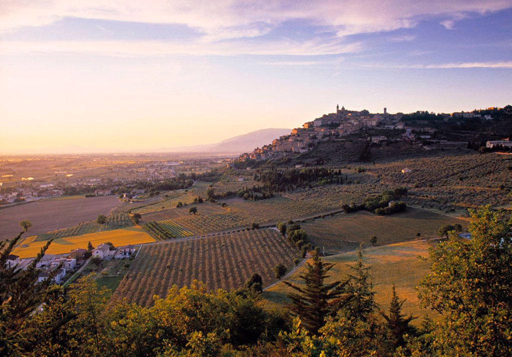 Trevi, Umbria, Italy : Stock Photo
